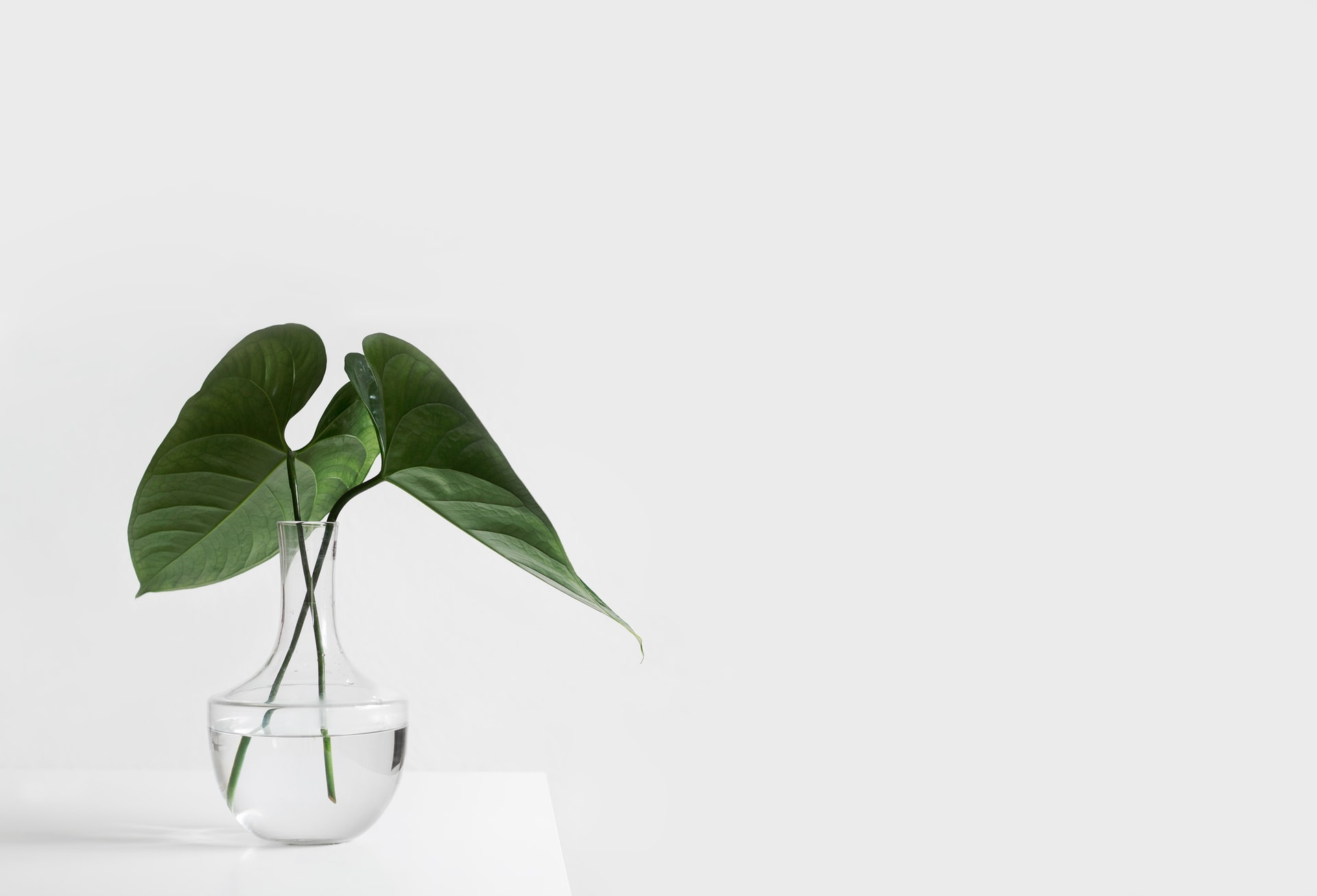5 Tips to Pursuing a Minimalist Lifestyle
